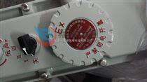 新疆防爆電熱油汀BDR-2KW/11P