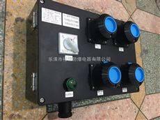 BJY8050-防腐检修箱、防腐插座箱