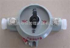 SW-10防爆照明开关批发
