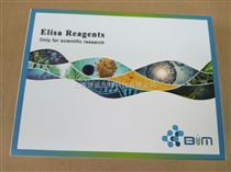 BIM试剂盒,人EJ抗体/抗甘氨酰tRNA合成酶抗体(EJ/GlyRS)ELISA试剂盒