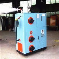 山东省聊城市生物质颗粒蒸汽炉利于散热
