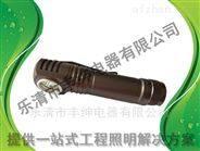 笔夹式防爆强光手电筒 BXD6030正辉