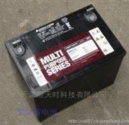 大力神蓄电池CD12-100