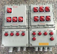 BXM-防爆照明动力配电箱接线实物图
