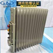 供应BDR-2KW13片防爆电加热器 防爆油汀