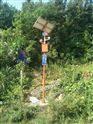 太阳能语音播报视频抓拍森林防火设备