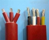 ZR-YGGRP2/22硅橡胶电缆(阻燃,钢带铠装)