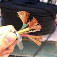 DJYVP22计算机电缆DJYVP22工业电子线