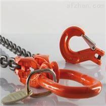 美国pewag轮胎保护链