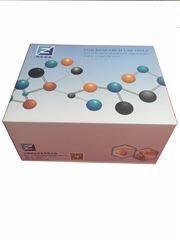 25羟基维生素d3试剂盒