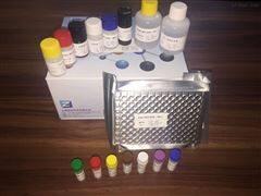 免疫球蛋白试剂盒