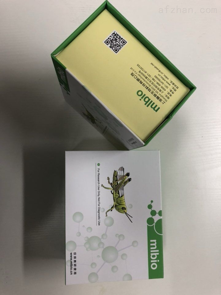 大鼠外異蛋白A酶聯免疫試劑盒
