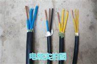 ZR-DJVPV22阻燃计算机电缆-消防用电缆