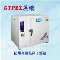 250升防腐涂层高温防爆干燥箱