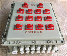 BXMD-TBXMD防爆照明动力配电箱