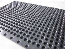 温州pvc排水板厂家价格
