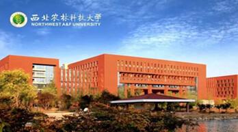 天跃科技携手西北农林科技大学 打造一体化智慧校园